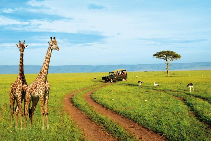 SUR DE AFRICA