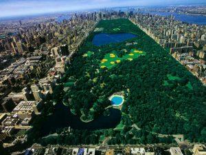central-park-new-york1
